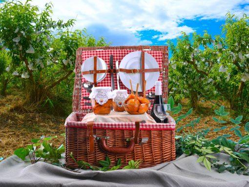 Un vero cesto da picnic vintage con piatti, posate, confetture di pesche e vino su una tovaglia distesa all'ombra di un pescheto.